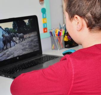 Wirtualna wycieczka rodzinna, czyli 11 miejsc, które zwiedzicie online!